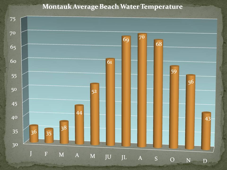 Beach Water Temperatures