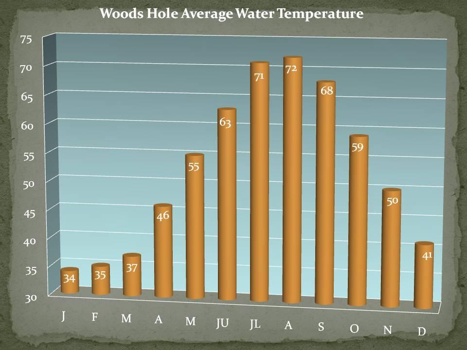 Average Temperature In Long Beach Island Nj